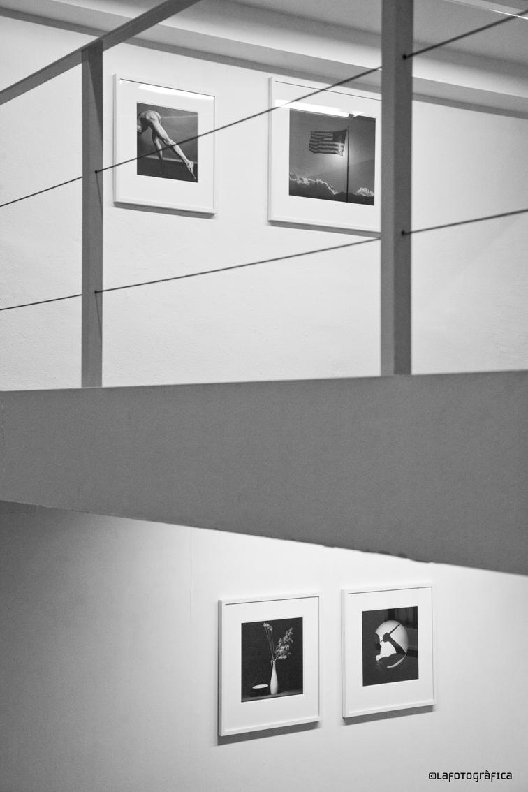Mapplethorpe a la Galeria Senda ©lafotografica